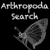 Arthropoda Search Online Miscellaneous game