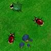 Beetle Wars Online Shooting game
