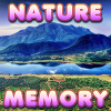 Brain Memory Nature Online Puzzle game