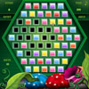 Checkercraze Online Miscellaneous game