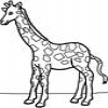 Coloring Giraffes 1 Online Miscellaneous game