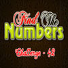Find the Numbers 42 Online Puzzle game