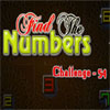 Find the Numbers 54 Online Adventure game