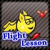 Flight Lesson Online Action game