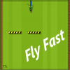 Fly Fast Online Action game
