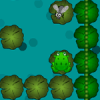 FrogFly Online Puzzle game