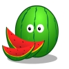 Melon Final Pack Online Miscellaneous game