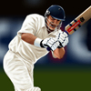 Online Cricket 2011 Online Action game