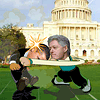 Political Duel 2 Online Arcade game