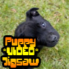 Puppy VIDEO Jigsaw Online Miscellaneous game