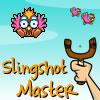 Slingshoot Master Online Arcade game