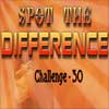 Spot the Difference 30 Online Puzzle game