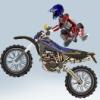 Supreme Stunts Online Sports game