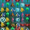 Tropical Fish Shop Online Puzzle game