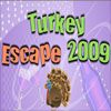 Turkey Escape 2009 Online Action game